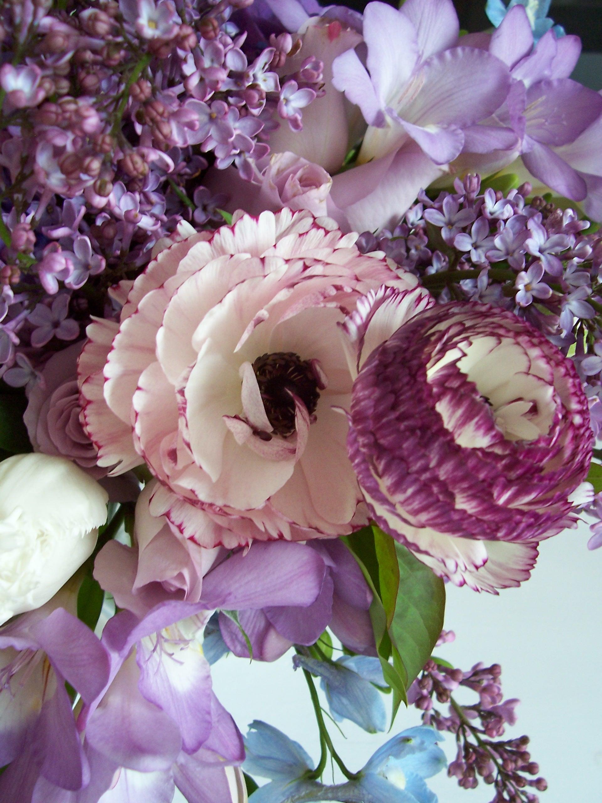 Ranunculas and Lilacs